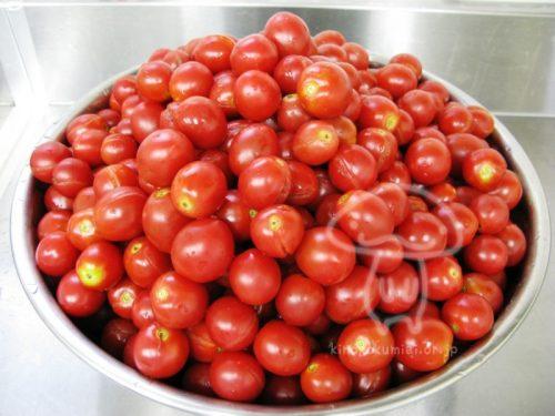 tomato2015